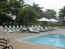 Parkland Apartment for rent in District 2, fully and beautiful furnished